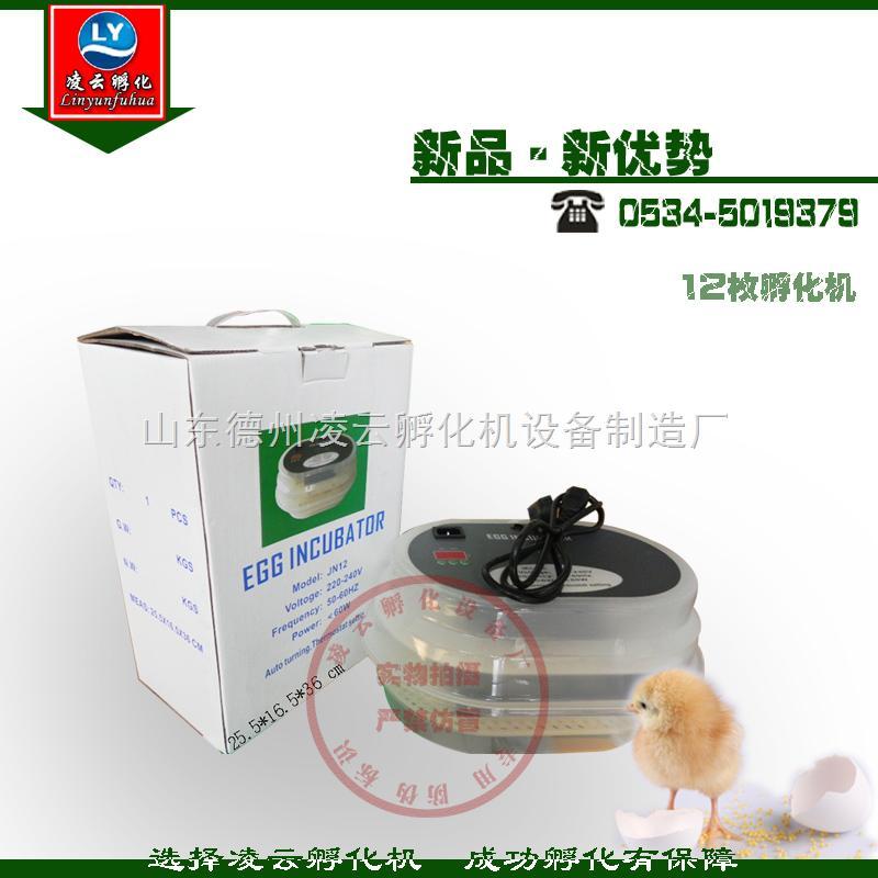 凌云鹌鹑孵化机 小鸡孵化机 鸡苗孵化机 12枚微型孵化机