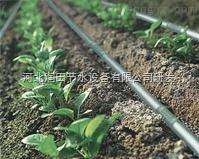 海南省果树滴灌管价格|低价滴灌管