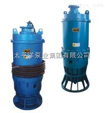 BQW矿用隔爆潜污电泵,太平洋BQW潜水电泵,100BQW120-50-30