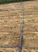 上饶县滴灌厂家经营各种滴灌带 江西大田滴灌设备销售