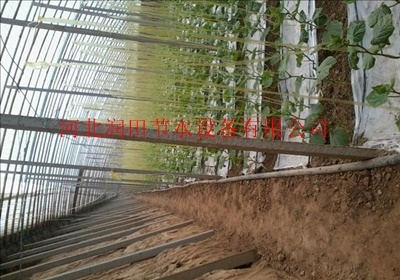 优质农用滴灌带——左云县总代理