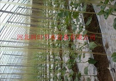 左云县农用滴灌带每亩多少钱