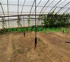 齐全可定制大棚微喷节水效率高 河南吊悬微喷头灌溉