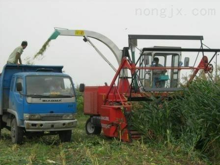玉米茎穗秸秆青储收获机
