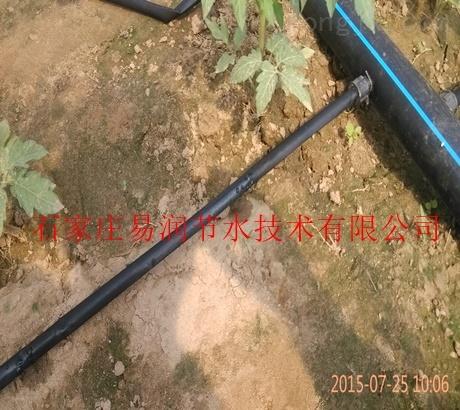 蔬菜增产_滴水带是福星|阜平镇温室滴灌厂家