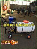 手推拉管高压汽油喷雾器