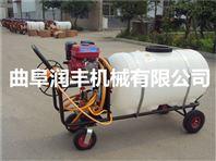 汽油喷雾器型号 打药喷雾器规格 手推大容量高压喷雾器