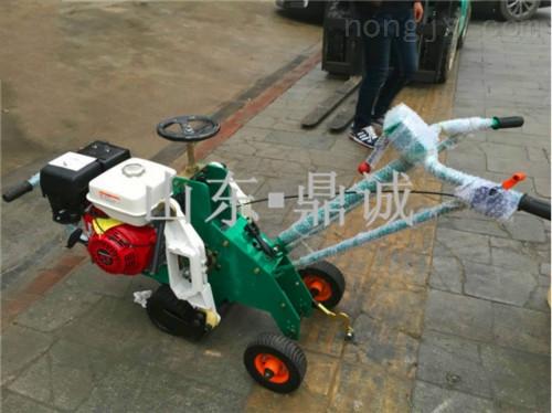 贵州遵义汽油草坪起草机 手推式汽油起草皮机 可以铲草皮的机器 效率高草坪移植机