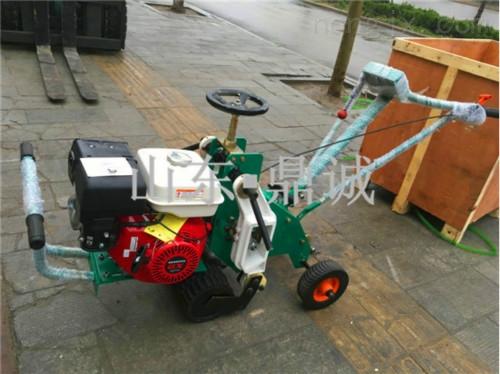 浙江湖州本田汽油机起草皮机 手推起草机绿化机械 草坪移植机推草机  产量高