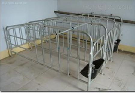 2.1*6-母猪定位栏养殖设备生产厂家电话地址