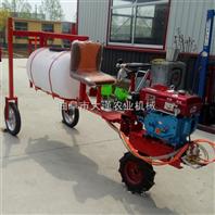 手推式园林绿化喷洒机 汽柴两用高杆喷雾器