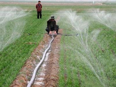 水肥耦合技术
