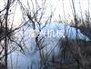 FX YWJ果园背负式弥雾烟雾机